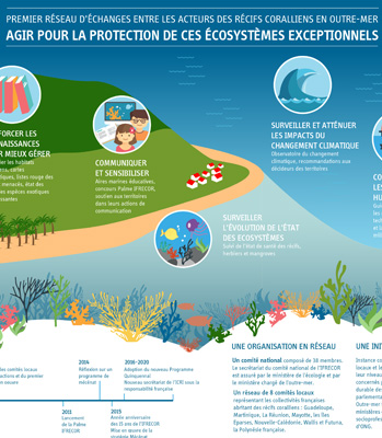 thumb julie beal infographie ifrecor
