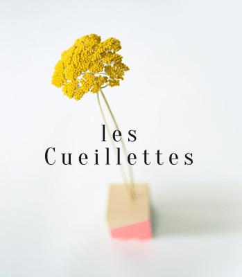 Julie Béal les Cueillettes Identité graphique et photo
